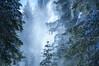 Schneestaub (Mariandl48) Tags: windböe bäume wald schneestaub schnee wind alpl waldheimat steiermark austria