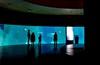 Oceanografic_0381 (LifeViewer) Tags: valencia mediterráneo oceanografic beluga acuario