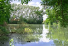 Naturlandschaft (ramonaschmitt) Tags: water nikond3300 nikon landschaft natur nature blau weis grün green blue white spiegelung bäume