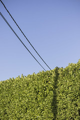 Skyline. (louisverplancken) Tags: line simple cable sky nature street photography electric color colorful minimal minimalist minimalism simplicity canon eos 7d mkii 50mm f18 stm belgique belgium taintignies