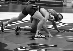 BRO-STA 149 2018-01-13 DSC_8242 bw (bix02138) Tags: brownuniversity brownbears stanforduniversity stanfordcardinal pizzitolasportscenter pizzitolasportscenterbrownuniversity providenceri january13 2018 wrestling sports intercollegiateathletics athletes jocks ©2018lewisbrianday 149pounds 149 zachkrause jakebarry