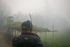 Watching over (Mehdad1) Tags: new nikon bangladesh color village winter wintermorning