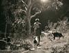 The Shepherd (Anuj Nair) Tags: ©anujnair goat shepherd theshepherd mullukurumba tribalsofindia nilgiris westernghats tribes kurumba kuruma mullukuruma forest jungle