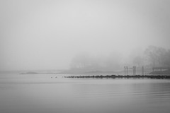 Morning Fog (janetbland) Tags: fog bw blackandwhite sea sound cove stamford connecticut water canoneos pier trees winter mist sky bay ocean wood