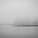 Morning Fog thumbnail