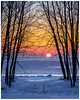 Winter Colours (etzel_noble) Tags: canon70200f4 michiganlake lakeerie colorful colors silhouette trees snowphotography snow statepark michiganpark sterlingstatepark puremichigan michigannature naturelovers naturephotography sunriselandscape landscapelovers michiganlandscape wintercolors winterlandscape winterscape michiganwinter winterlovers winterphotography michigansunrise wintersunrise sunrisecolors chasingsunrise sunriselovers sunrisephotography michigan nature landscape winter sunrise