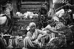 Mumbai - il mercato... (Renato Pizzutti) Tags: mumbai mercato donnevenditrici foglie mercatodidadar nikond750 renatopizzutti 7dwf portfolio10