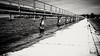 Digue métallique (Lac du Der). (Cedraw) Tags: nature lac lacduder lacartificiel paysage digue diguemétallique métal passerelle passerellemétallique noiretblanc blackandwhite blackwhite bw monochrome monochrom noir blanc gris black white grey nikond5300 nikon18105 nikon lumière luminosité lumineux grandest nordest nord est champagneardennes marne régule régulationdelamarne fantasticnature