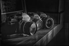 Nikon vintage camera!!! (Des.Nam) Tags: nb noiretblanc nikon noirblanc ft2 nikonfm nikonfg20 nikkormatft2 bw blackwhite monochrome mono vintage old oldcamera appareilphoto argentique analogique analog analogefex silverefex desnam nikond800 d800 ancien frame shadow ombres contraste 85mm f18