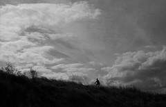 Rider (bingley0522) Tags: leicaiiic nikkorh5cmf20ltm tmax100 hc110h epsonv500scanner shorelinepark sunnyvale bike rider autaut