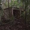 toilets - currumbin valley (J.K.Stevens) Tags: goldcoast currumbin currumbinvalley toilet forest woods rainforest australia queensland nature landscape green age shak mamiya mamiyac220 mediumformat kodak kodakportra400 sekor80mmf28 sekor