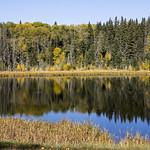 , Waskesiu Lake, Prince Albert National Park thumbnail