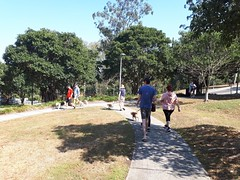 walk-dutton-park-2017-10