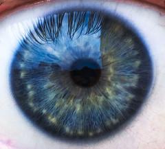 365 Photo challenge day 14. Eye Macro (Mark240590) Tags: closeup macro blueeye blue eye
