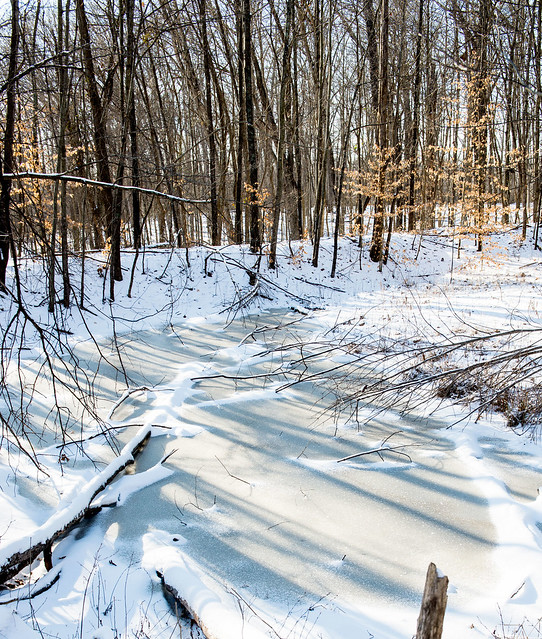 Hoosier National Forest - McPike Pond - January 15, 2018