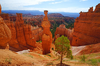 Thor's Hammer from Navajo Loop Trail, Bryce Canyon
