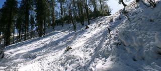 Narkanda Snow