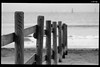 IMG_2654 (anto-logic) Tags: fence steccato mare autunno natura caldo sole italia sabbia spiaggia dof profonditàdicampo focus bokeh onde waves litorale blackandwhite biancoenero bn bw bello luce skinnydippers orme paws bagno nuotata divertimento felicità libertà liberi tramonto gioia swimming free freedom fun happiness joy sunset libero sea hot autumn nature sun italy beautiful sand sandy stairs beach water clear light red nice pretty lovely gorgeous fabulous wonderful pov pointofview puntodivista eos canon