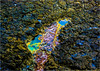 Rest For A While! (nimitrastogi) Tags: nature water rock australia phillip island nikon photo photography rest sea waves beauty beautiful abstract unconventional explore inexplore