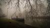 Port (PetschoX5) Tags: petscho freedomstreaming canon 700d fotografie photography deutschland germany tree bäume grün green schute fog port hafen main frankfurt