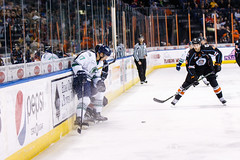 """Kansas City Mavericks vs. Florida Everblades, February 18, 2018, Silverstein Eye Centers Arena, Independence, Missouri.  Photo: © John Howe / Howe Creative Photography, all rights reserved 2018 • <a style=""""font-size:0.8em;"""" href=""""http://www.flickr.com/photos/134016632@N02/39491161645/"""" target=""""_blank"""">View on Flickr</a>"""