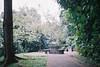 F1020011 (ev3lyn) Tags: nature singapore bukit timah reserve