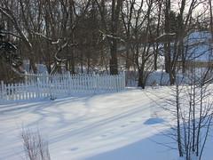 Winter scene (creed_400) Tags: snow sun light white belmont west michigan february winter