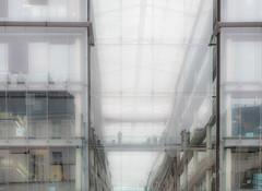 FacadeMix.jpg (Klaus Ressmann) Tags: klaus ressmann omd em1 autumn fparis france facade architecture cityscape contemporary flccity reflection softtones klausressmann omdem1