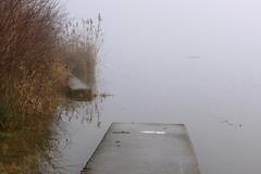 Greifenstein (Harald Reichmann) Tags: niederösterreich greifenstein donau altarm wasser bauwerk ufer rampe umsetzanlage nebel schilf