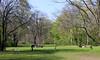 Berlín_0234 (Joanbrebo) Tags: berlin alemania de tiergarten park parque parc gente gent people canoneos80d eosd efs1018mmf4556isstm autofocus peopleenjoyingnature