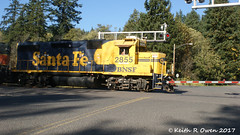 Local at Work (youngwarrior) Tags: homevalley washington train bnsf railroad local locomotive emd gp392