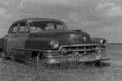Monochrome Glory (William 74) Tags: cadillac vintage car blackandwhite blackwhite bw monochrome barn rural film argus c3 scan abandoned
