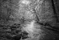 River Teign (ebenette) Tags: ebenette leica monochrom devon dartmoor drewsteignton teignriver breathtakinglandscapes