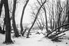 (mariuszlemiecha) Tags: pentaxespio928 ilfordhp5 epsonv700 warsaw winter snow