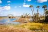 Orlando Wetlands (J. Parker Natural Florida Photographer) Tags: orlando orlandowetlands wetlands marsh swamp palm palmtree bluesky sky sunshine sunny outdoor landscape nature scenic vibrant colorful vsco vscofilm centralflorida florida sunshinestate floridahikes hiking trail hammock water lake pond