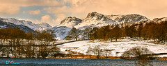 Loughrigg Tarn Winter View (Dave Massey Photography) Tags: loughriggtarn langdale langdalepikes lakedistrict cumbria
