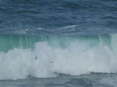P1040785 (jesust793) Tags: mar sea olas waves