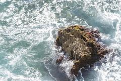 Kauai-3 (Wen.SF) Tags: water ocean kauai