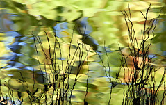 L'eau de là! (Ciceruacchio) Tags: eau water acqua réflexion reflection riflessione couleurs colors colori canon abstract astratto abstrait