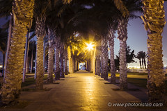Beyond Dark Path - Light (Photonistan) Tags: path photonistan photography road tree dates light darkness corniche motivation life growth