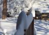 Snow_12.5 (Scott_Knight) Tags: yard railing minnesota bloomington january storm