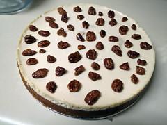 Cheesecake. (dccradio) Tags: lumberton nc northcarolina robesoncounty indoors inside food eat round dessert sweet treat cheesecake glazedpecans nut nuts pumpkin canon powershot elph 520hs