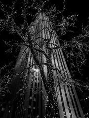 Rockefeller (Harald Philipp) Tags: rockefeller newyork city skyscraper lights christmaslights night rockefellercenter bw blackandwhite monochrome dark