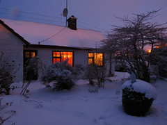Warm Windows and Distant Streetlights (sam2cents) Tags: cottage house snow semidetached wintry weather spring streetlights glow light dark ice chilly cold wicklow ireland bungalow ranchhouse windows curtains colour color tones tone warmth garden landscape shrubs trees tree shrub bush bushes
