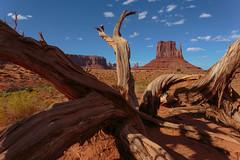 Dry Monuments (leakylightbucket) Tags: monumentvalley utah tribalpark navajonation landscapephotography