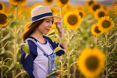Sunflowers and a girl (tony.liu.photography) Tags: sunflowers flowers portrait outdoors location portraiture girl nobby queensland australia canon 5d4 sigma 135mm art