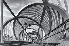 Puente de Arganzuela (michael_hamburg69) Tags: madrid spanien spain españa espagne fusgängerbrücke brücke bridge modern architektur architecture dominiqueperrault park parque madridrío manzanares river flus arganzuelfootbridge coniaxial pedestrian puente