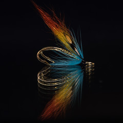 Flytying (bfossli) Tags: salmonfly salmonfishing flyfishing flytying fishing fiske fluebinding laksefiske