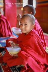 Novice à l'Ecole Monastique de Pemayangtse à Pelling, Sikkim, Inde - Novice at the Pemayangtse Monastic School in Pelling, Sikkim, India ( Jean-Yves JUGUET ) Tags: monk moine novice boudhist buddism inde india ladakh himalaya himalayas bouddhisme bouddha buddha monastère monastery noviale none pemayangtse ecolemonastique pelling monasticschool sikkim