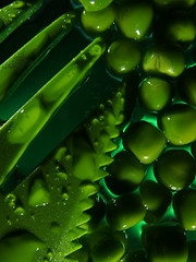 Eat your greens (brian teh snail) Tags: monochrome peas spork green macromonday water